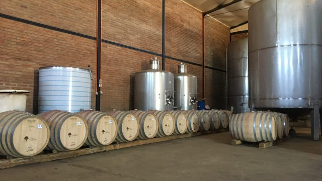 Some of our French barrels